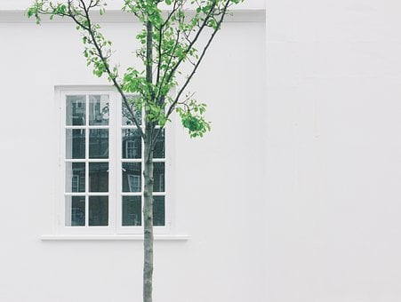 House, Home, Residence, Exterior, Window, Panes, Walls