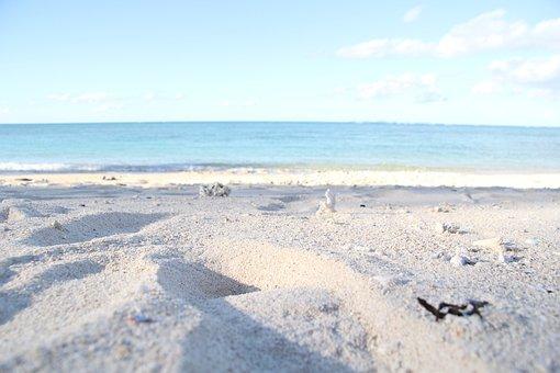 Beach, Sandy, Okinawa, Northern, Sea, Comfort