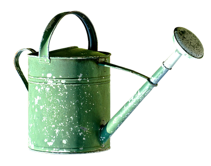 Watering Can, Pot, Garden, Casting, Irrigation, Green