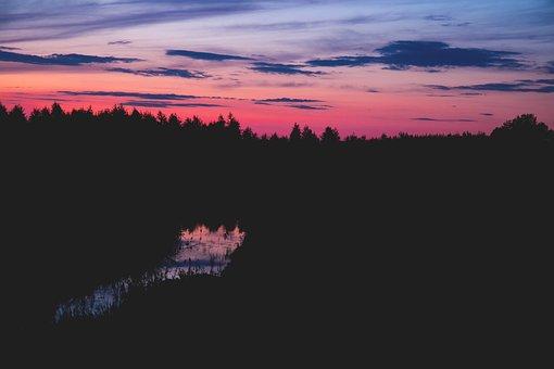 Nature, Landscape, Forest, Trees, Lake, River, Sky