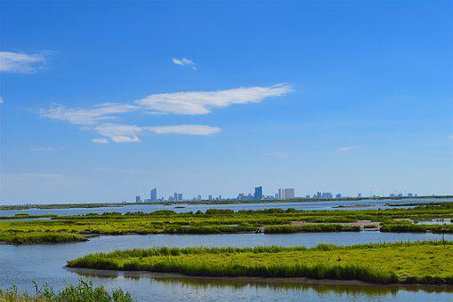 Marshland, Estuary, Water, Grass, Sunny, Nature, Marsh