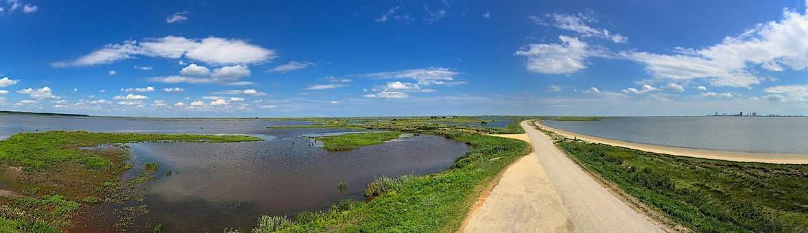 Marsh, Landscape, Estuary, Color, Water, Nature