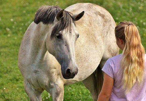 Girl, Love For Animals, Horse, Mold, Coupling