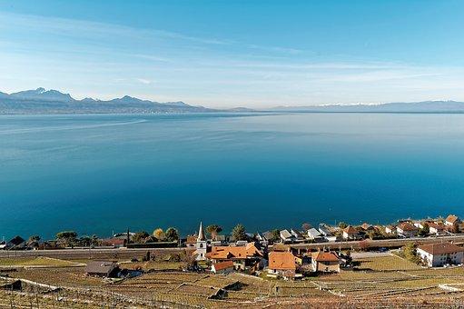 Geneva, Lake, Vaud, Switzerland, Vineyards, Lavaux