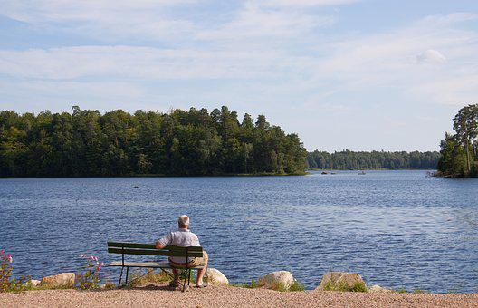 Lake, Forest, Woods, Person, Bench, Sweden, Beach