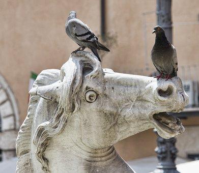 Rome, Italy, Italian, Architecture, Travel, Landmark