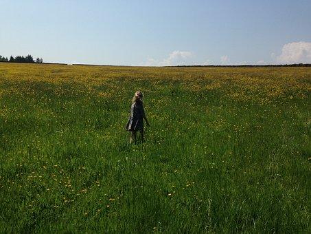 Girl, Child, Kid, Childhood, Summer, Field, Freedom