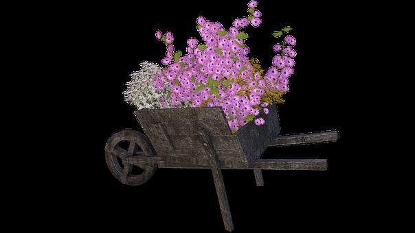 Flowers, Cart, Pushing Barrow, Wheelbarrow, Deco