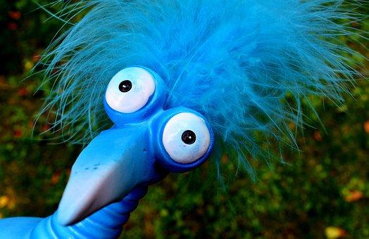 Joker, Blue, Funny, Weird Bird, Cute, Feather