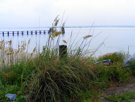Coast, Pier, Beach, Nature, Bald Head Island, Grass