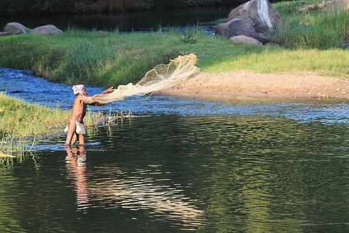 Fisherman, Fisher, Fish, Lake, Lake Man, River, Water