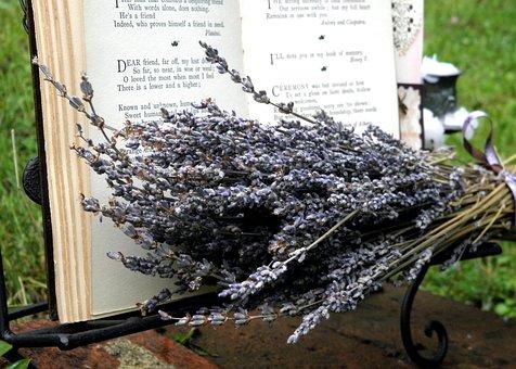 Still Life, Lavender, Dried Lavender, Poetry, Vintage