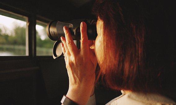 Girl, Woman, Binoculars, Looking, Watching