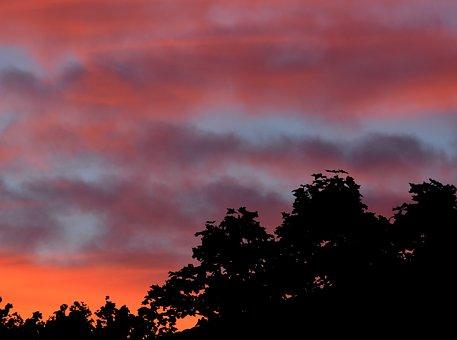 Himmel, Sunset, Cloud, Tree, Twilight, Evening