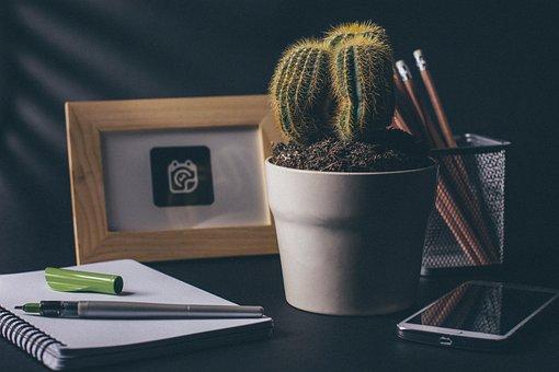 Cactus, Office, Desk, Notebook, Notepad, Pens, Pencil