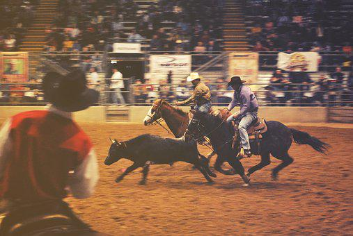 Rodeo, Horses, Cowboys, People, Spectators