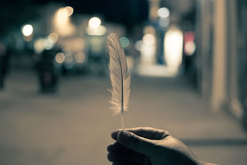 Feather, Hands, Night, Lights, Blurry