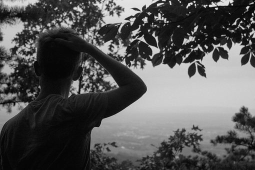 Guy, Man, People, Black And White, Trees, Leaves