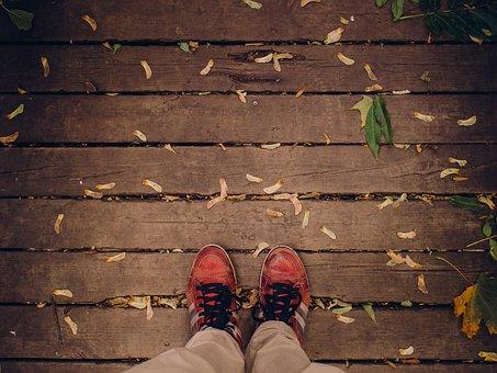 Shoes, Laces, Wood, Planks, Deck, Leaves, Samara, Fall