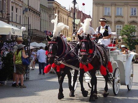 Krakow, Poland, Horse, Street, Clarence, Square