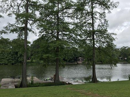 Swamp, Louisiana, Water, Cypress, Nature, Bayou, Moss