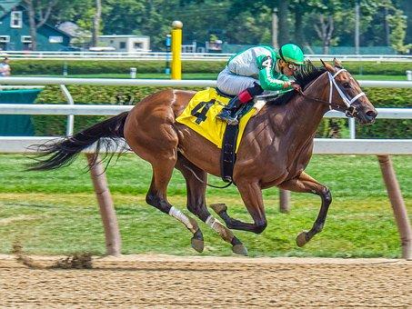 Race Horse, Jockey, Horse, Horse Racing, Speed, Fast