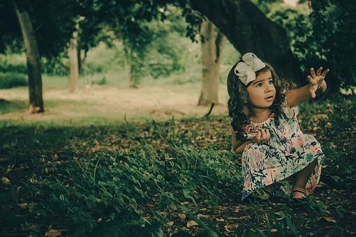 Girl, Forest, Dress, Child, Alone, Sitting, Lace, Hands