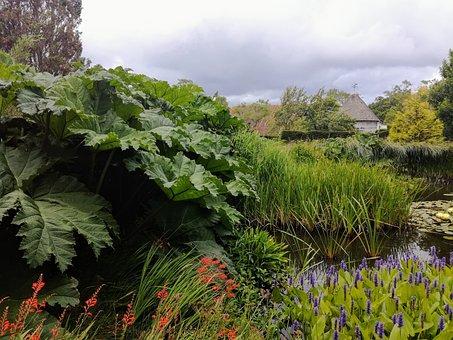 Great Dixter, Pond, Garden, Nature, Northiam, Rye