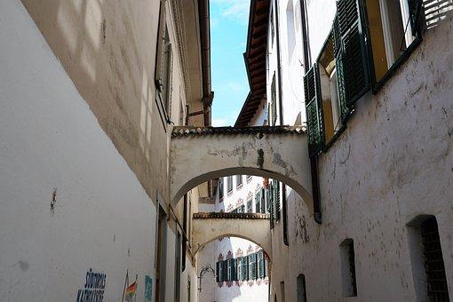 Road, Meran, Italy, South Tyrol, Holiday, Summer, Tree