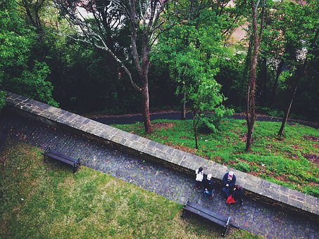 Trail, Path, Green, Grass, Trees, Benches, Cobblestone