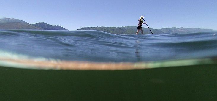 Sup, Paddle Board, Paddle, Fitness, Water, Lake