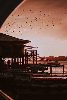 Sunset, Sol, Sky, Landscape, Beach, Brazil, Eventide