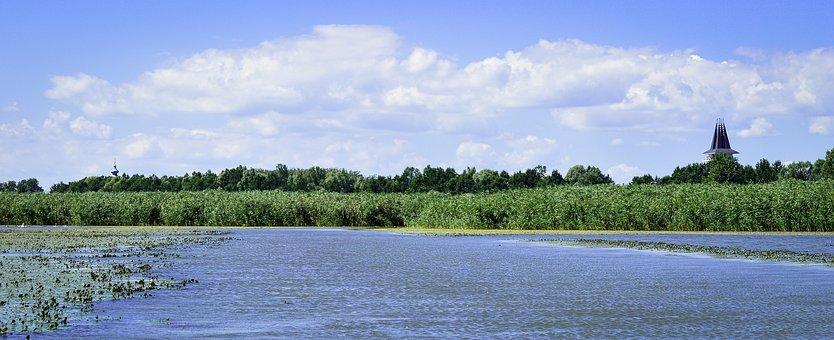 Tisza-lake, Poroszló, Green, Blue, Summer, Nature, Sky