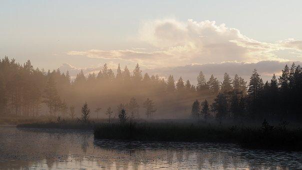 Landscape, Mist, Morning, Fog, Lake, Finnish, Nature