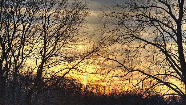Sunset, Scenery, Trees, Artistic, Art Print