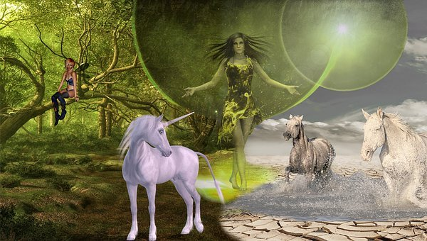 Fantasy, Unicorn, Elf, Forest, Mysticism, Horses