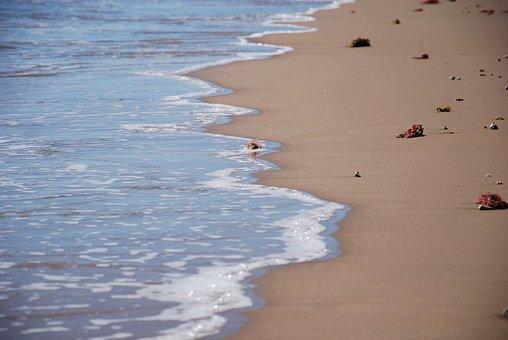 Foam, Ocean, Water, Beach, Sand, Wave, Tidal, Sea