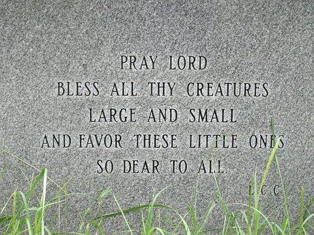 Pets, Grave, Prayer, Dog, Animal, Cemetery, Bury, Cat