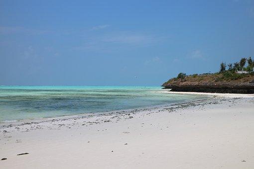 Sea, Water, Beach, Exotic, Palm, Island, Sand, Lagoon
