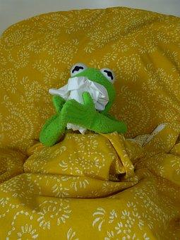 Ill, Cold, Sniff, Handkerchief, Kermit, Frog