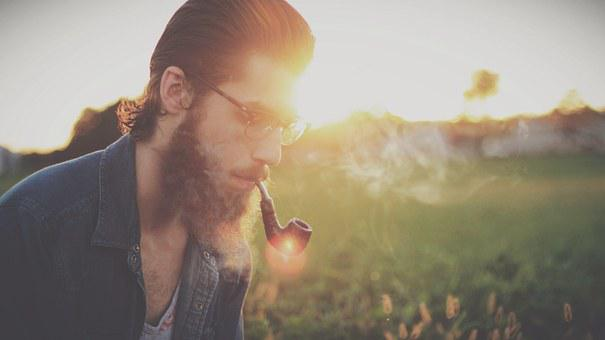 Man, Glasses, Hipster, Beard, Adult, Male, Style