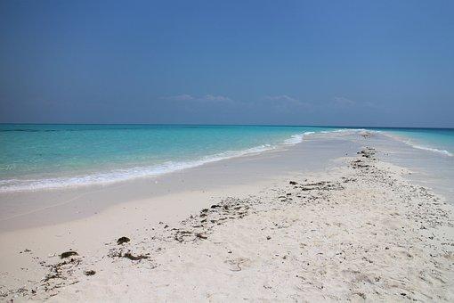 Beach, Sand, Lagoon, Sand Beach, Sea, Summer, Holiday