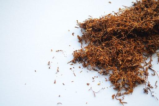 Tobacco, Smoker, Cigarette, Nicotine, Addiction, Habit