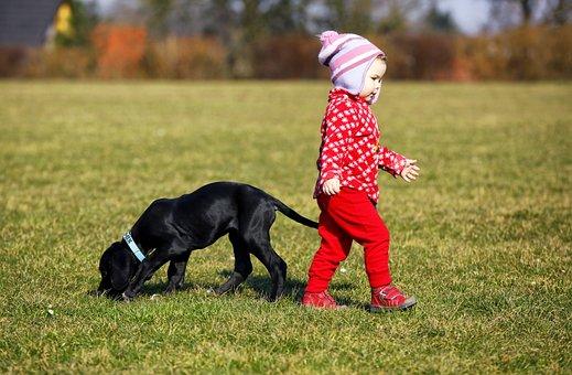 Child, Dog, Animal, Red, Puppy, Pet, Black, Grass