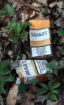 Pollution, Garbage, Cigarettes, Box, Cigarette Box