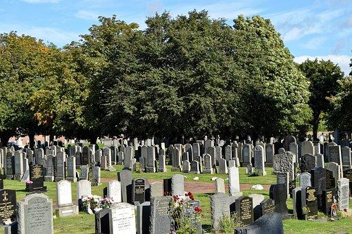Cemetery, Trees, Headstones, Graves, Graveyard