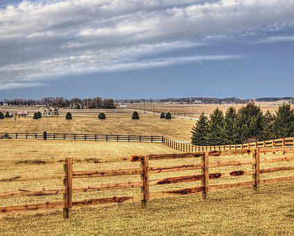 Scenery, Fence, Trees, Artistic, Art Print, Digital Art