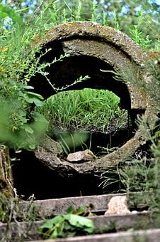 Stairway, Stairs, Stone, Green, Plant, Tunnel, Tube