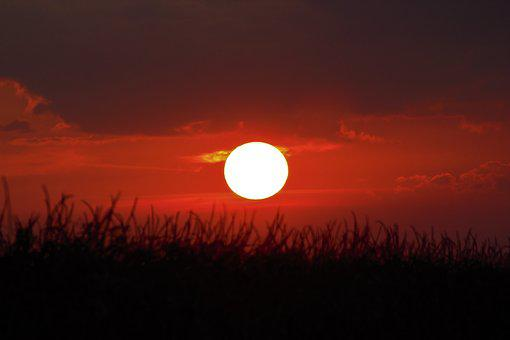 Day S, Sunrise, Summer, Beautiful, Natural