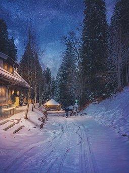 Snow, Night, Germany, Winter, Cold, Landscape, Travel